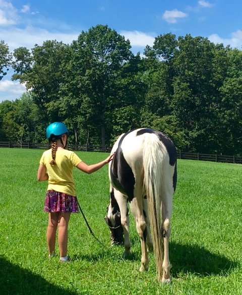 Raven Hill Farms horseback riding lessons