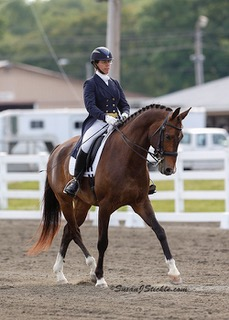 May 10 Clinic with Heather Mason @ RAven HIll Farms | Florida | New York | United States