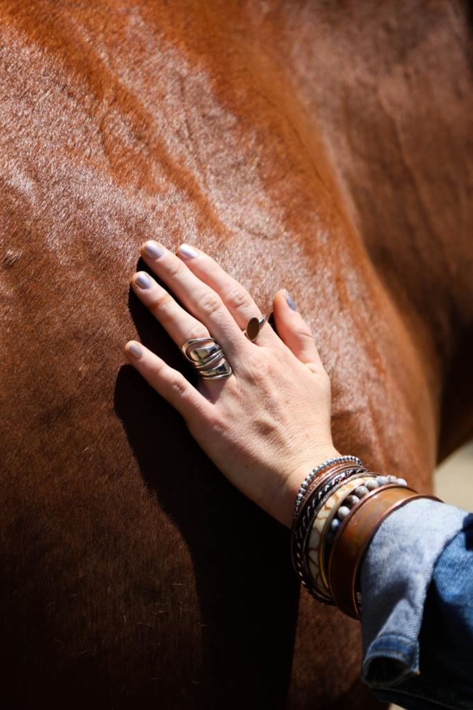 hand-horse